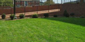 Landscape Supply near Charlottesville